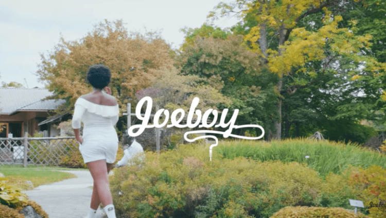 Lonely Video by Joeboy, JotNaija