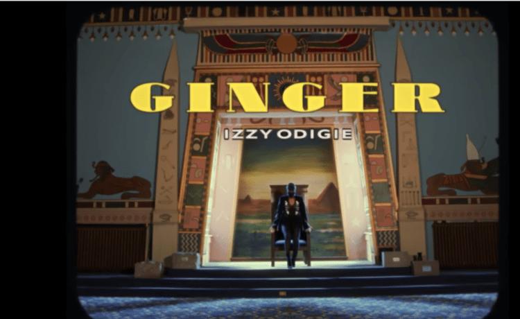 Ginger Dance Video, JotNaija