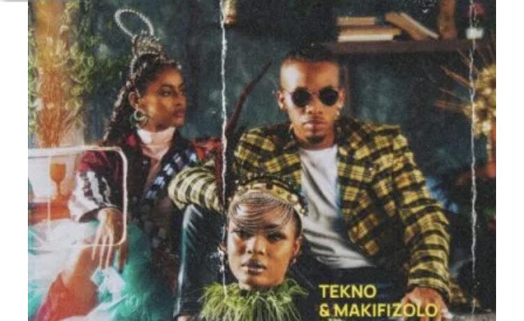 Tekno – Enjoy (Remix), JotNaija